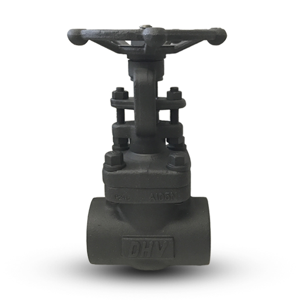 Original Image: DHV Forged Steel Valves